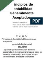 PCGA.pdf