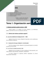organizacion sanitaria  española