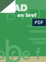 BAD en BREF Français 2012.pdf