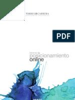 Informe de Posicionamiento Web