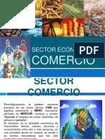 Sector Comercio
