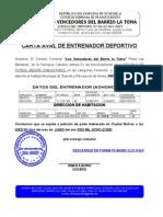 49450197 Consejo Comunal Formato Modelo Ejemplo Carta Aval