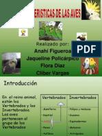 Carcteristica Sde La Aves