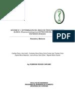 Informe Indice de Frescura