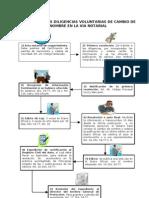 62626622-Esquema-de-Tramite-Cambio-de-Nombre.pdf