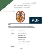 Analisis Ambiental Conjuntos Habitacionales