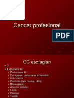 Cancer Profesional