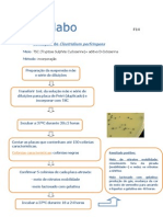 Contagem de Clostridium Perfringens- F14