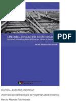 Cultura, Juventud, Identidad - Marcela Pais Andrade
