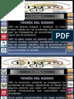 Teoria Del Riesgo y Del Riesgo Profesional