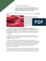 Avances espectaculares para producir células madre de la sangre