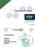 Digestion Humana