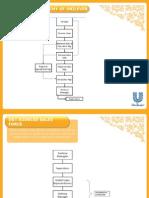 unilever sales hierarchy