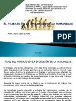 EVOLUCIÓN DE LA HUMANIDAD  ines