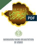 Pakistan Flood 2011