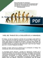 EVOLUCIÓN DE LA HUMANIDAD. PEREZMALPI