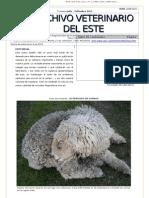 Archivo Veterinario Del Este - 3T_2011