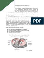 Endocarditis infecciosa bacteriana Farmaco.docx