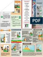 Dgproteccion PDF Trip Popo