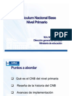 CNB Nivel Primario Enero 2013
