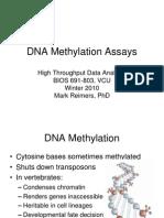 4 - DNA Methylation Assays
