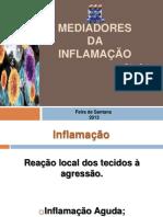 Mediadores da Inflamação. Finalizado