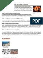 Beneficios de Las Cenizas de Madera
