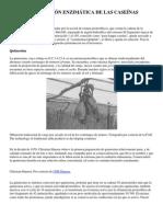 COAGULACIÓN ENZIMÁTICA DE LAS CASEÍNAS