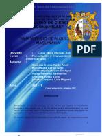 Informe Final s&m Servicios y Maquinarias