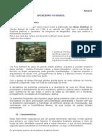 AULA 8_Arcadismo no Brasil.pdf