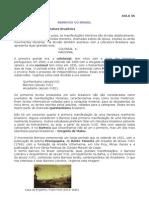 AULA 06 Barroco no Brasil.pdf