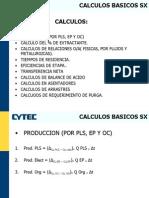 Calculos Basicos SX 1