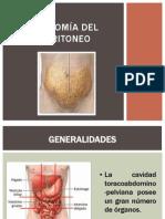 Anatomía del peritoneo