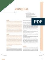 2 Asma Bronquial