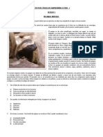 Texto Para Trabajar Comprensión Lectora - 1.docx