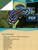 PF Sistem Neurologi