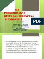 Program Dan Perkembangan Kb Di Indo