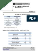 91114690 Reporte Peru Mexico