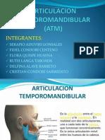 Articulacion Temporomandibular Diapositiva