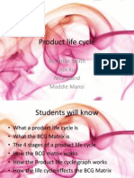 Product Life Cycle and BCG Matrix Ppt