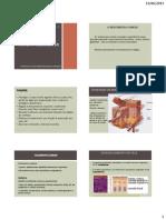 Aula 4 _ Sistema Tegumentar UFAM 2013