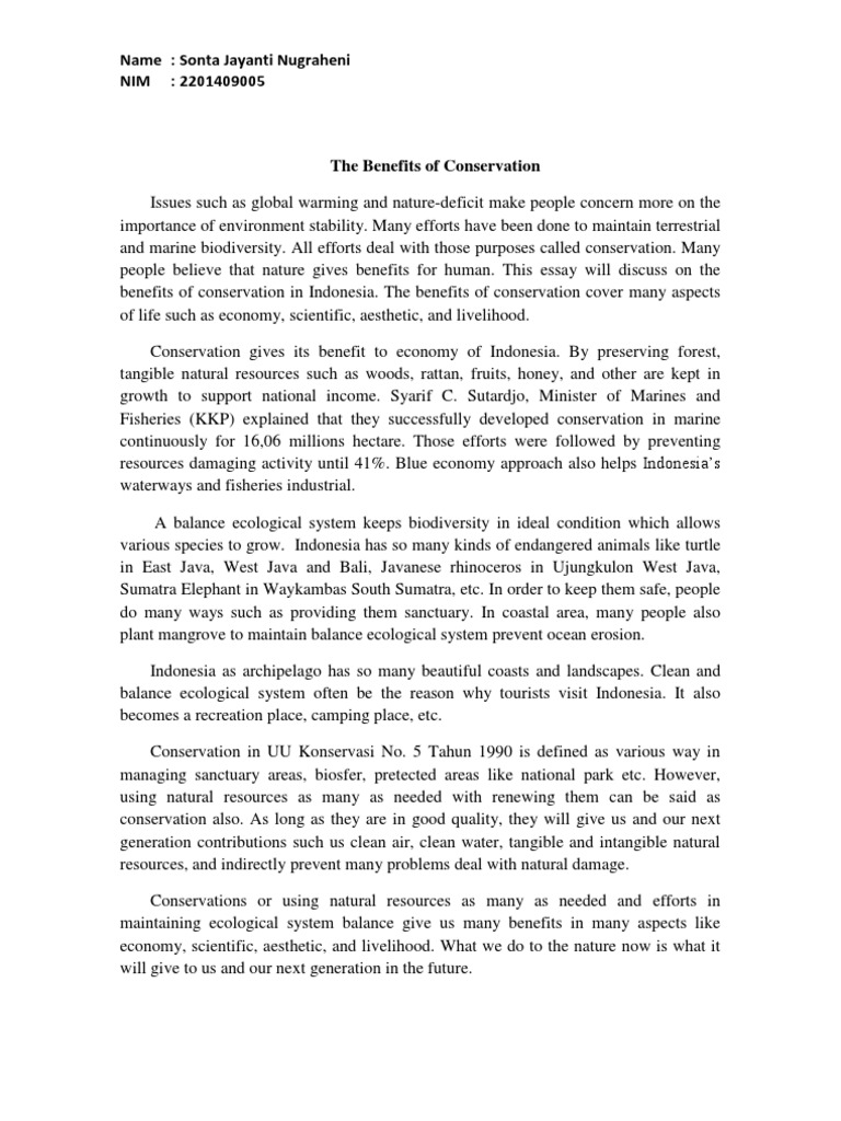 essay konservasi