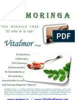Catalogo+Vitalmor+Ultimo+Energy
