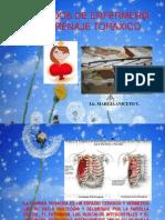 atenciondeenfermeriaenpacientecondrenajetoraxico-110114192227-phpapp01