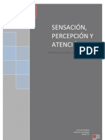definitivotrabajodesensacionypercepcion-120425023005-phpapp02(1)