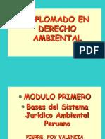 Bases Del Derecho Ambiental