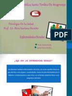 Exposicion Salud Renales