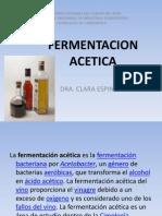 FERMENTACION ACETICA.pptx