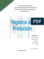 Registros de Produccion.docx