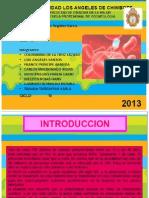 Diapositiva Del Sida Corregidas